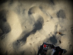 Copyright © Nosrat Panahi Nejad, Majakovskij in spiaggia