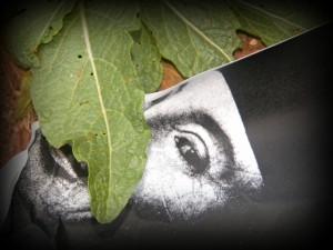 """Copyright © Nosrat Panahi Nejad """"l'enigma del  sorriso"""""""